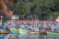 Mirissa Harbor