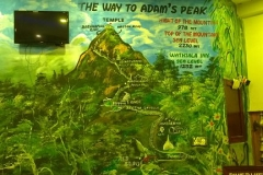 The way to Adam's peak