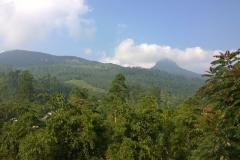 View on Adam's peak from Wathsala Inn